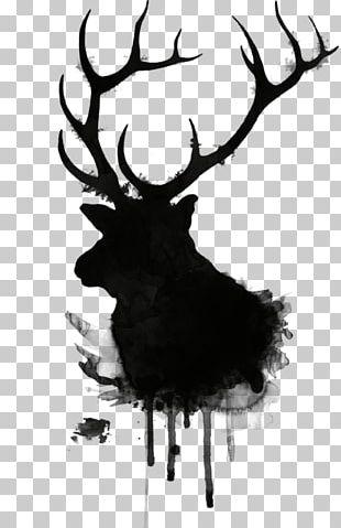 Elk Deer Moose Drawing Antler PNG