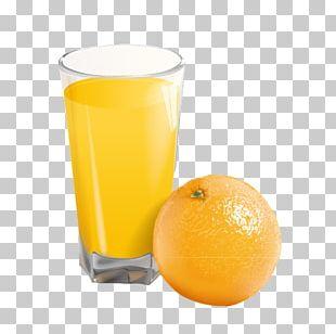 Orange Juice Harvey Wallbanger Orange Drink Orange Soft Drink PNG