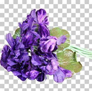 Cut Flowers Violet Petal Corsage PNG