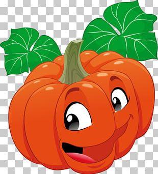 Calabaza Vegetable Fruit PNG