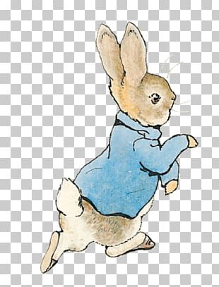 The Tale Of Peter Rabbit The Tale Of Jemima Puddle-Duck The Complete Tales Mr. McGregor PNG