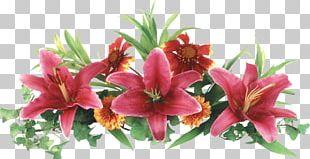 Arranging Cut Flowers Digital PNG