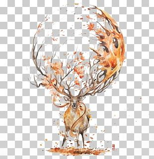 Deer Watercolor Painting Drawing Illustration PNG