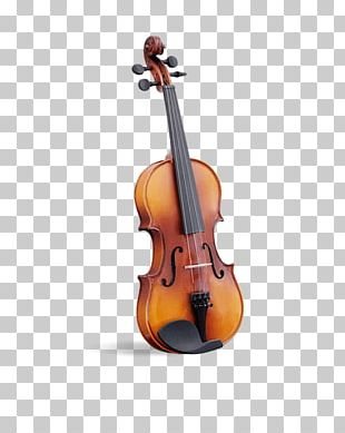 Violin Musical Instruments Viola Cello String Instruments PNG