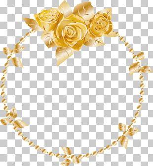 Yellow Euclidean Gold PNG