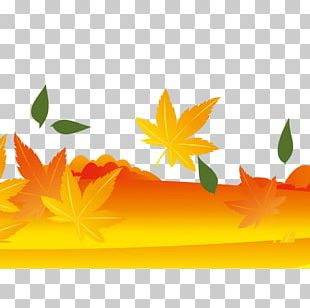Maple Leaf Yellow Autumn PNG