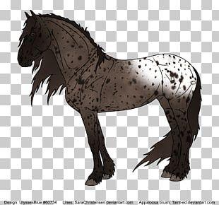 Friesian Horse Mustang Mane Stallion Pony PNG