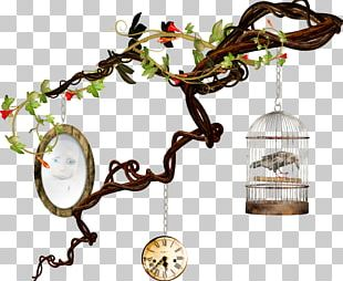 Clock Cage Bird Halloween Film Series PNG