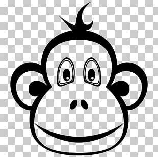 Ape Chimpanzee Monkey T-shirt Orangutan PNG