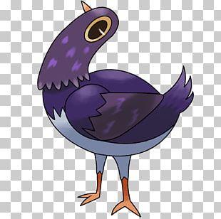 Trash Doves Bird Columbidae PNG