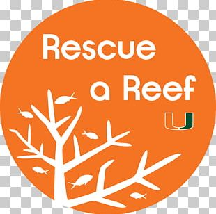 Coral Reef Fish Rescue A Reef PNG