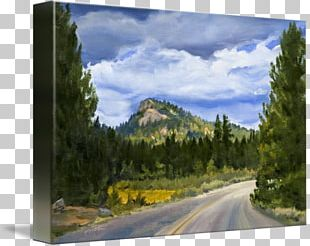 Sequoia National Park Mount Scenery Wilderness Painting Nature PNG