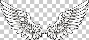 Icon Wing PNG