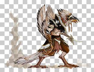 Bird Eagle Owl Beak Feather PNG