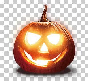 Jack-o-lantern Pumpkin Halloween Winter Squash PNG