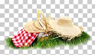 The C Programming Language Picnic Stock Photography Design PNG