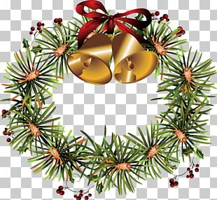 Spruce Christmas Decoration Fir Christmas Ornament Evergreen PNG