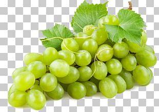 Common Grape Vine Wine Juice Concord Grape PNG