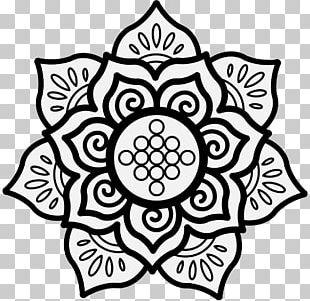 Nelumbo Nucifera Hindu Art Symbol Drawing PNG