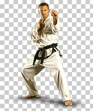 Mixed Martial Arts Karate Taekwondo Brazilian Jiu-jitsu PNG