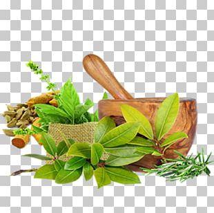Ayurveda: Die Besten Tipps Aus Dem Jahrtausendealten Naturheilsystem Des Maharishi Ayurveda Medicine Ayurvedic Healing Panchakarma PNG