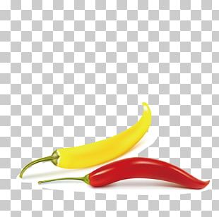 Bell Pepper Chili Pepper Vegetable Fruit Food PNG