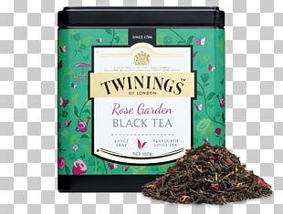 Darjeeling Tea Earl Grey Tea Green Tea English Breakfast Tea PNG
