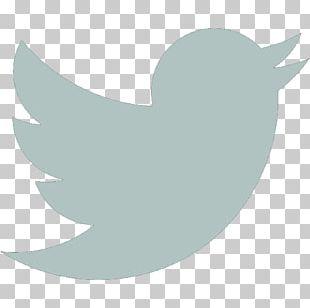 Social Media Computer Icons Logo Influencer Marketing PNG