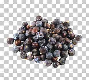 Juniper Berry Gin Juice PNG