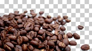 Chocolate-covered Coffee Bean Cafe Irgachefe PNG