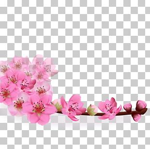 Flower Greeting Card PNG