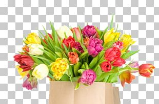 International Womens Day Holiday Ansichtkaart Birthday Woman PNG