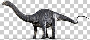 Jurassic World Evolution Apatosaurus Pachycephalosaurus Dinosaur PNG