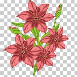 Cross Stitch Flowers Cross-stitch Floral Design PNG