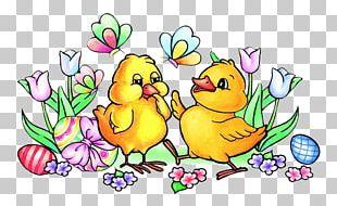 Easter Bunny Chicken Easter Egg PNG