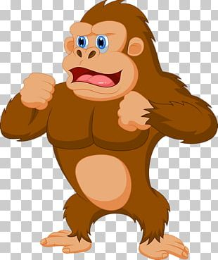 Western Gorilla Stock Photography PNG