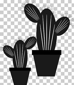Cactus/ Cactus Scalable Graphics PNG