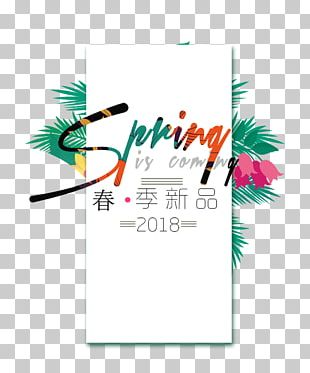 Poster Designer Fashion Clothing PNG
