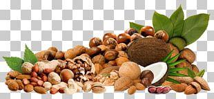 Nucule Almond PNG