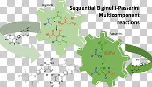 Biginelli Reaction Multi-component Reaction Beilstein Journal Of Organic Chemistry Chemical Reaction PNG