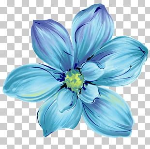 Flower Blue Rose Stock Photography PNG