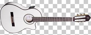 Classical Guitar Musical Instruments Plucked String Instrument String Instruments PNG