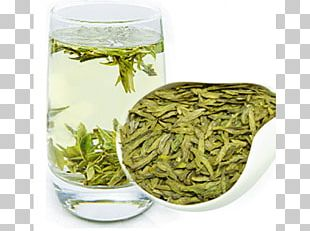 Hōjicha Nilgiri Tea Bancha Sencha PNG