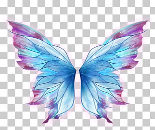 Butterfly Drawing Art Fairy PNG