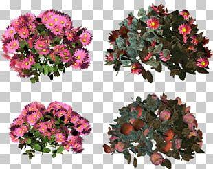 Cut Flowers Floral Design Floristry Artificial Flower PNG