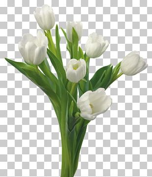 Tulip Flower Bouquet White Blue Rose PNG