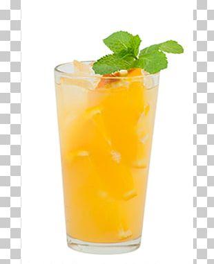 Mai Tai Cocktail Garnish Orange Juice Harvey Wallbanger PNG