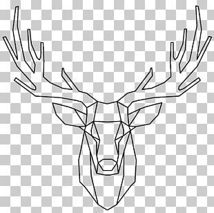 Red Deer Elk Reindeer PNG