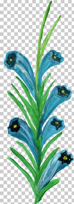 Bird Feather Plant Stem PNG