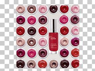 De Mooiste Wijnkelder Ter Wereld In 100 Flessen 100 Bouteilles Extraordinaires De La Plus Belle Cave Du Monde Amazon.com Online Shopping Handle PNG